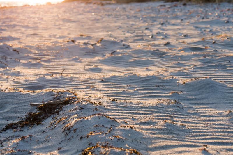 beach_strand_sand_pebbles_sten_b_ste-452320.jpg